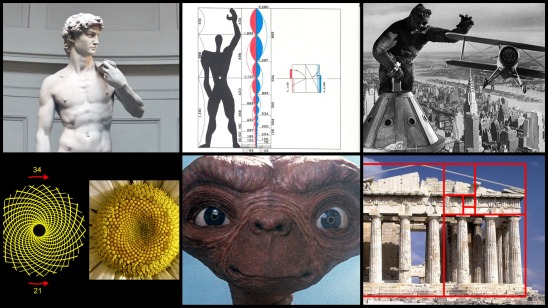 Collage_Proportions 02