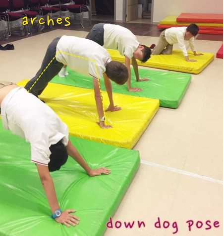 Down dog 1-s